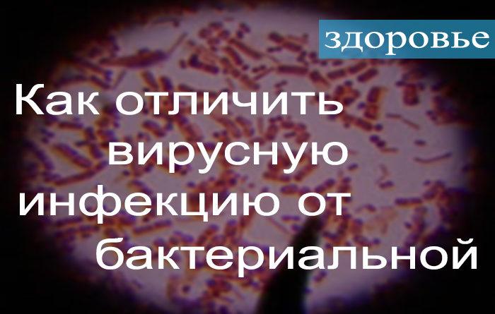 Как определить вирусная или бактериальная инфекция.